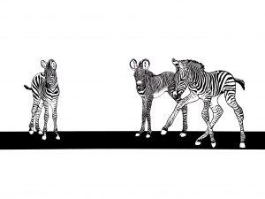 Illustration Habiba Doorenbos
